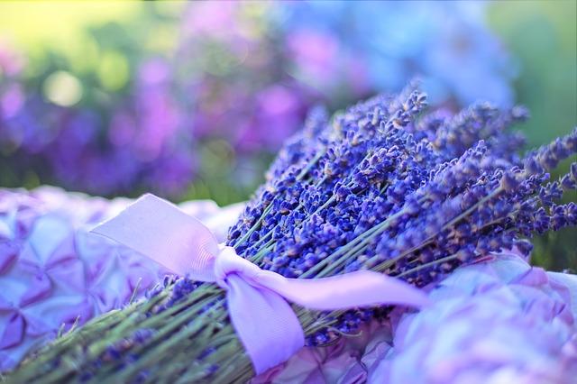 Lavender oil for sauna